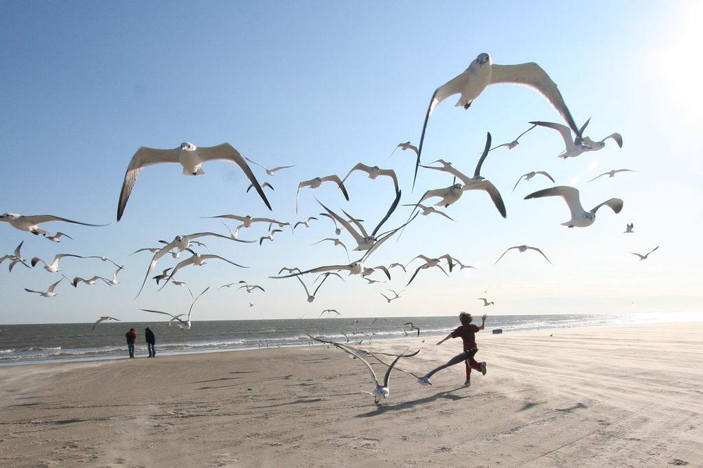 vacaciones-playa-salud-imagen-3