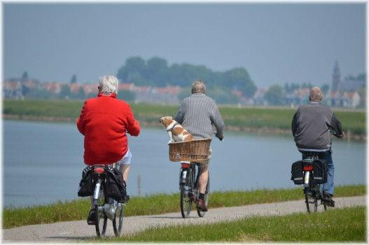 Tres personas montan en bicicleta en un día soleado